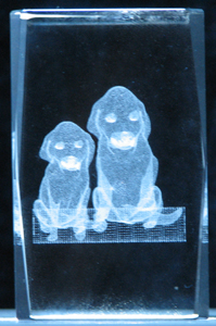 3-3d-laser-crystal-cube-2-puppies