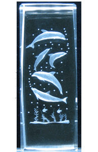 6-3D-Laser-Crystal-Cube---5-Dolphins