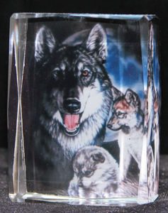 custom-color-crystal-cube-wolves-5